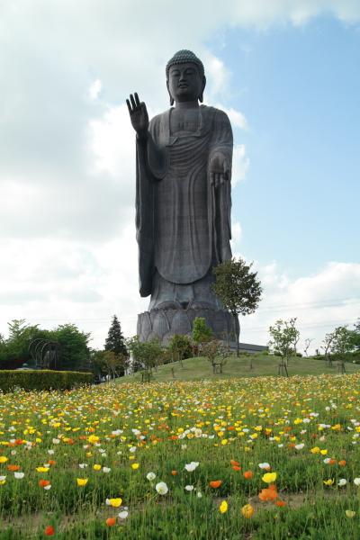 http://chinoken.net/wordpress/wp-content/images/mt_images/2010/20100516_09.JPG